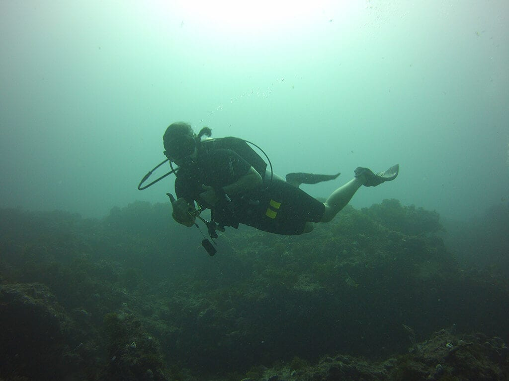 Scuba Diving in Crystal River Florida