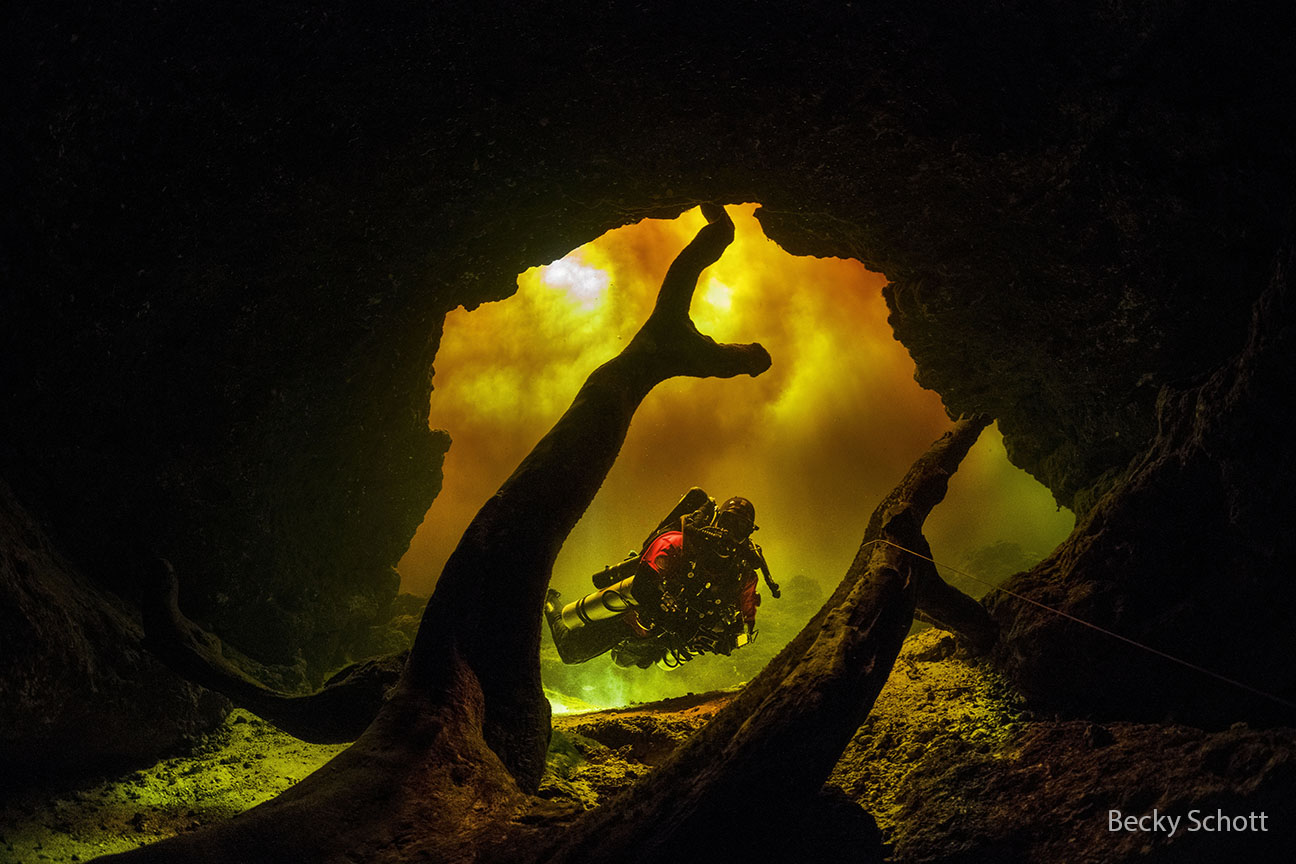 Preview Lightbox Little River Cavern Ccr Diver Dave Beckyschott Wm 1 1